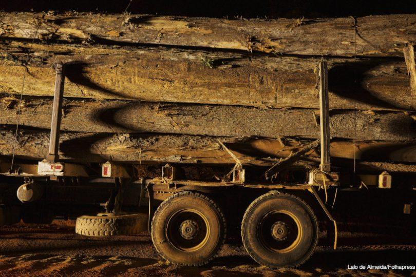 Ibama madeira ilegal