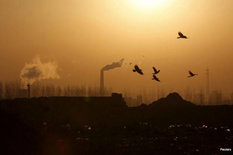China emissões de carbono