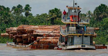 EUA CPI Amazônia
