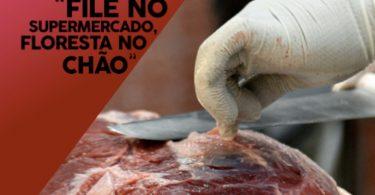 carne de desmatamento