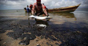 leilão blocos de petróleo