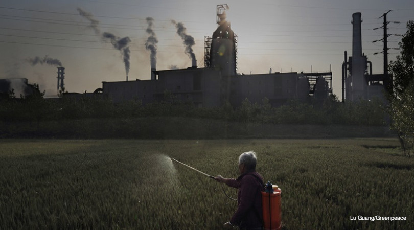 China carbono carvão