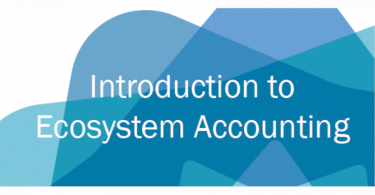 PIB ecosystem accounting