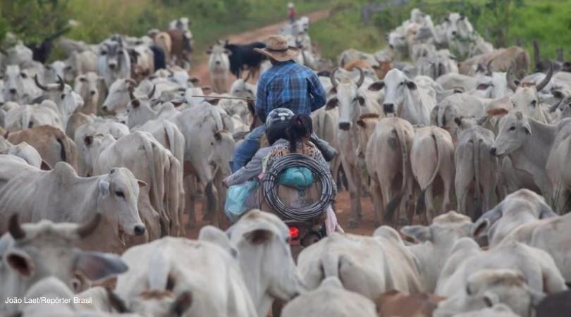 acordo mercosul ue pecuária brasil