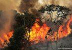 incêndios floresta amazônica