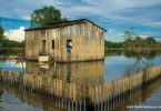 partos prematuros Amazônia