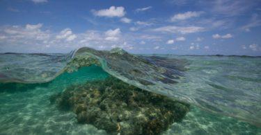 proteção dos oceanos
