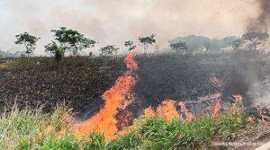 regularização fundiária Amazônia
