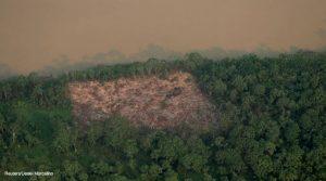 Amazônia chuvas