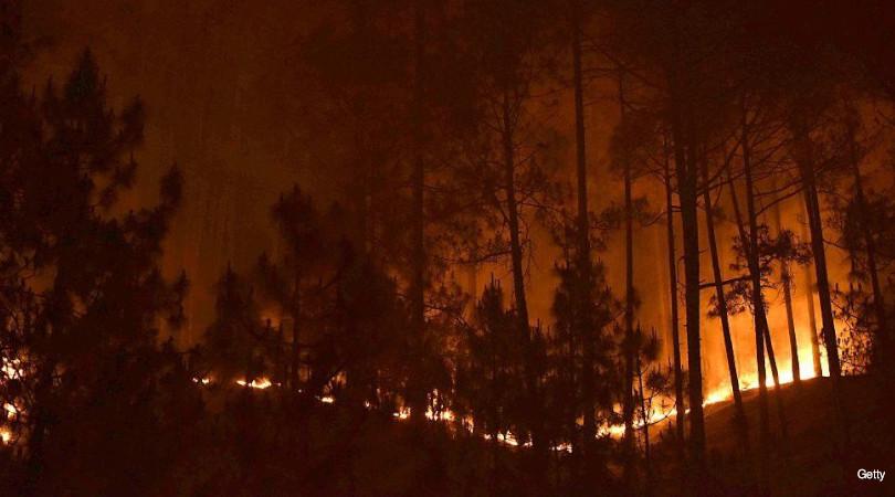 incêndios Himalaia