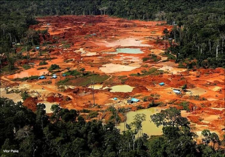 lavagem de ouro garimpo amazônia