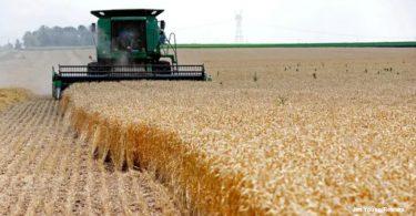produtividade agrícola