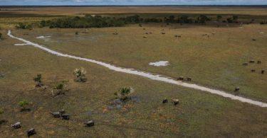 Rondonia Unidade de Conservação