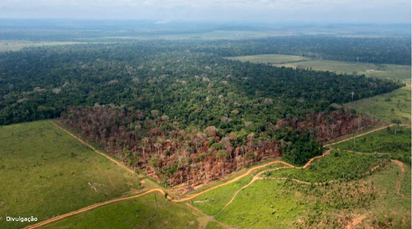 Rondonia redução proteção ambiental