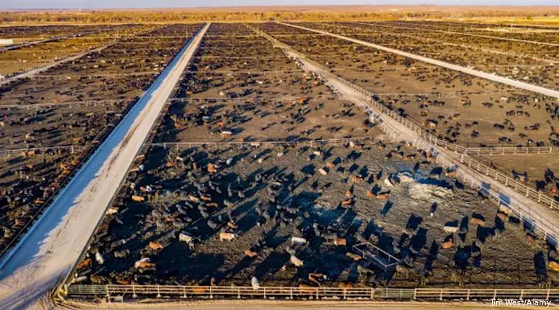 metano ONU