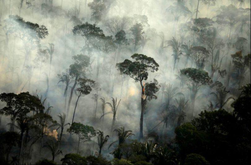 queimadas Amazônia 2021