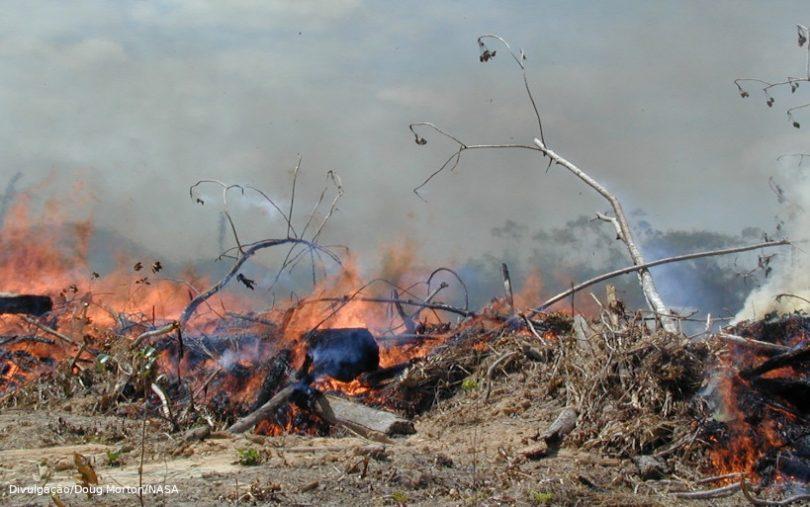 Temporada de queimadas