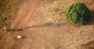 Tereza Cristina novas leis rastreamento agropecuária