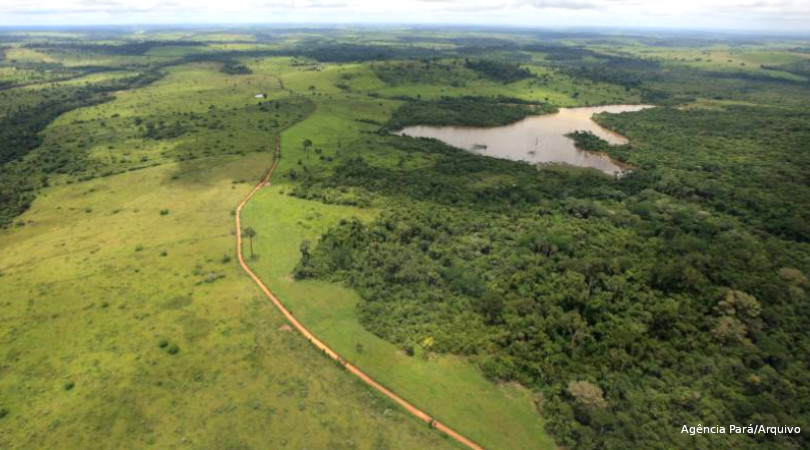 desmatamento Amazônia recorde