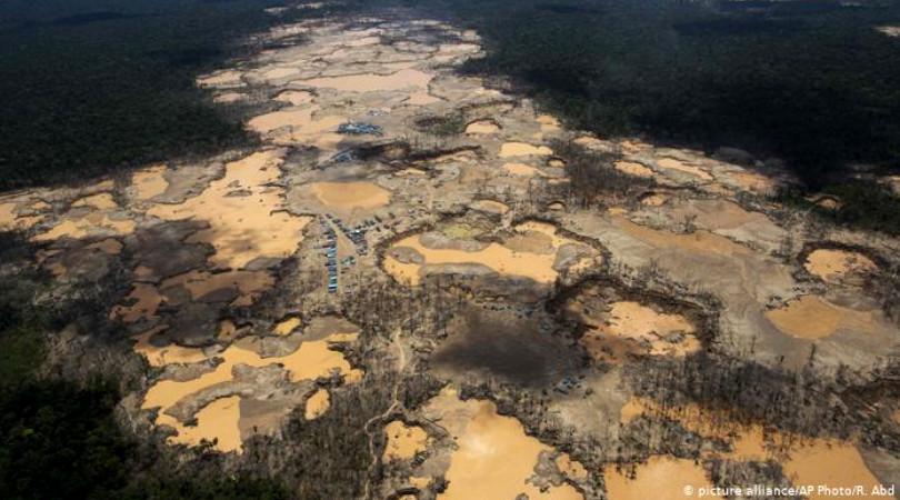 desmonte ambiental denúncia ONU