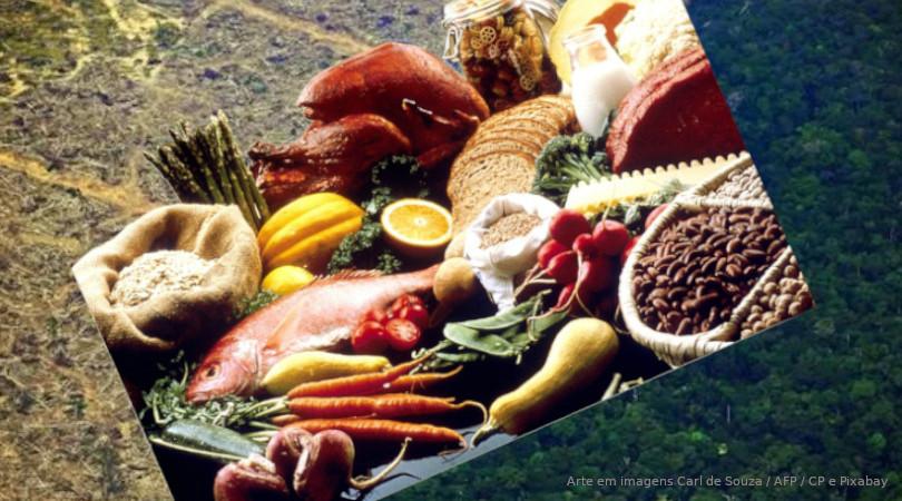 produção de alimentos desmatamento
