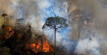 Amazônia temporada de queimadas