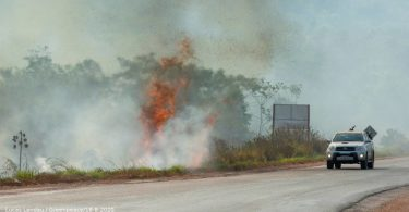 BR-163 desmatamento Amazônia