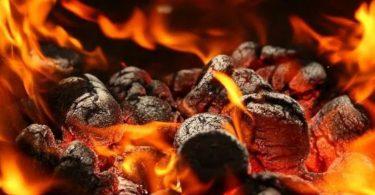 COP26 carvão