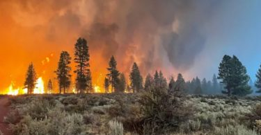 EUA Rússia incêndios florestais