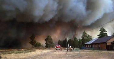 Síbéria incêndios florestais