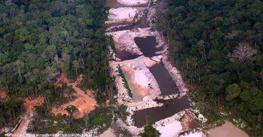 desmatamento Amazônia malária dengue