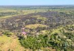 incêndio subterâneo Pantanal