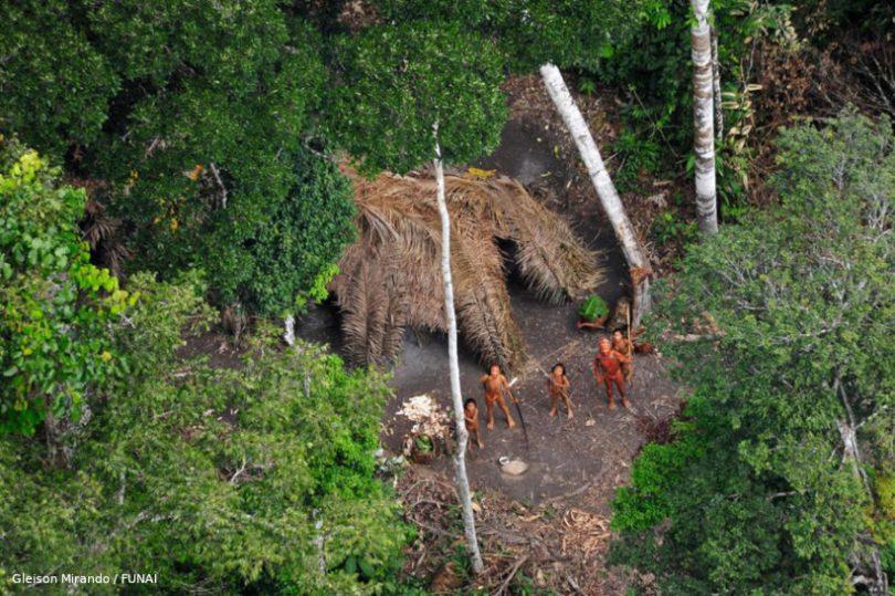 indígenas isolados