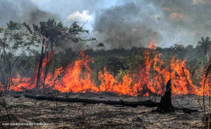 Amazônia queimadas
