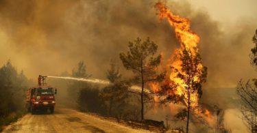 Raletório IPCC alerta vermelho