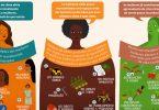 clima e gênero infográfico