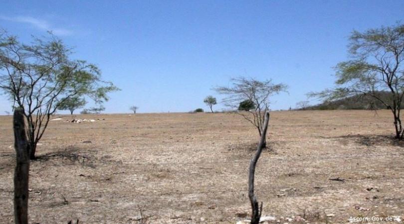 crise climática semiárido