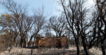frança espanha incêndios florestais