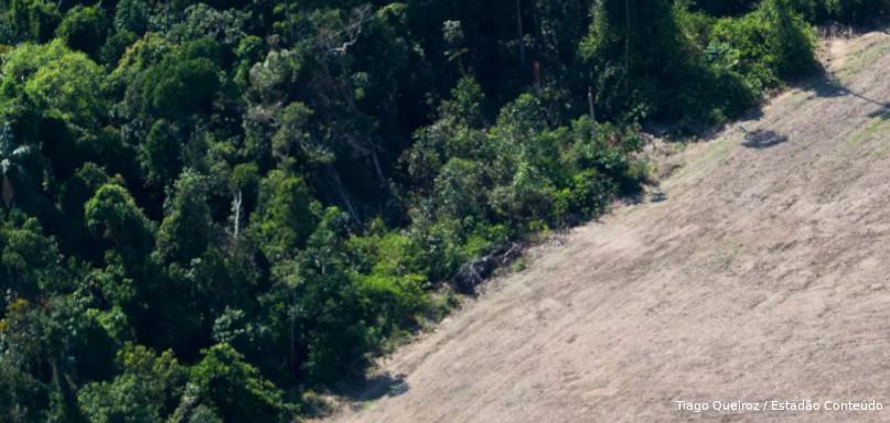 impactos devastação da Amazônia