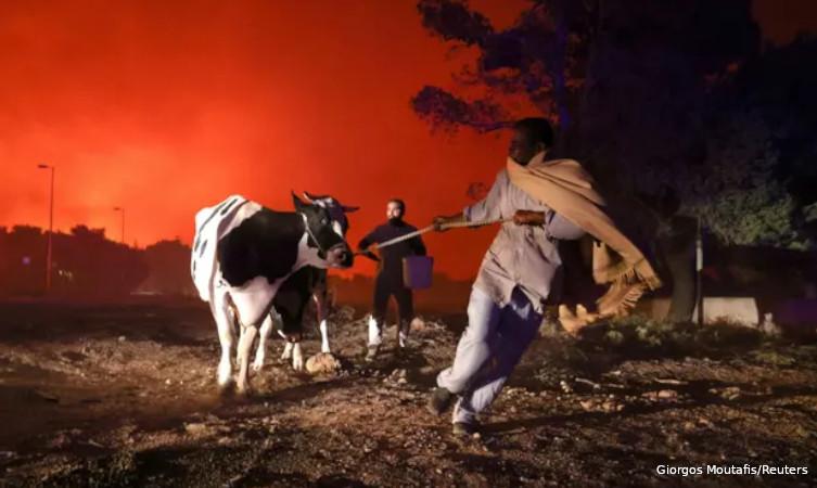 incêndios florestais EUA Europa