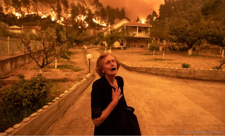 incêndios florestais Mediterrâneo