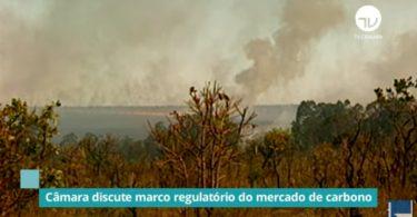 Brasil mercado de carbono