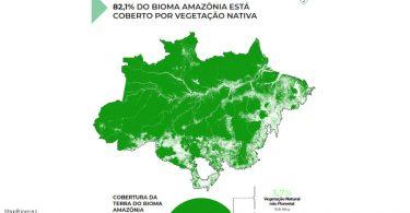 Cobertura terra bioma amazônia