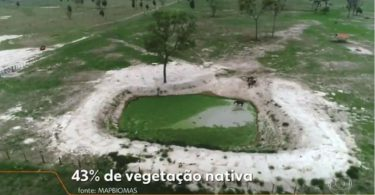 Pantanal desmatamento