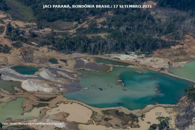 desmatamento Amazônia 2021
