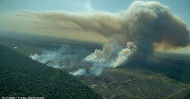 desmatamento amazônia cerrado