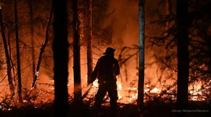 incêndios florestais emissões