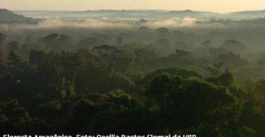 Amazônia hidrelétricas