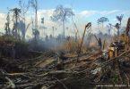 Brasil COP26 dois países